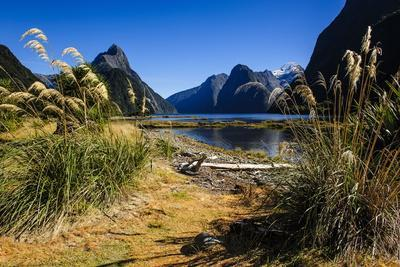 The Steep Cliffs of Milford Sound
