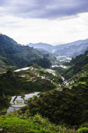 The Rice Terraces of Banaue, Northern Luzon, Philippines, Southeast Asia, Asia