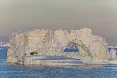 Huge Icebergs Calved from the Ilulissat Glacier, Ilulissat, Greenland, Polar Regions