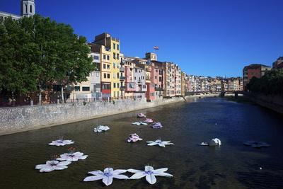 River Onyar During the Flower Festival, Girona, Catalonia, Spain