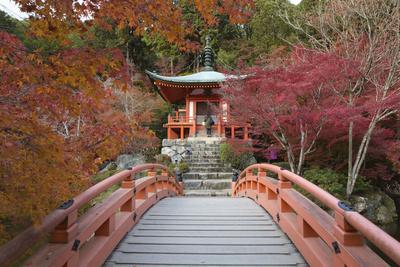 Japanese Temple Garden in Autumn, Daigoji Temple, Kyoto, Japan
