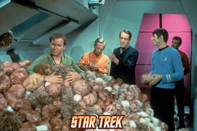 """Star Trek: The Original Series, Captain Kirk in """"The Trouble with Tribbles"""""""