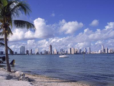 Miami Skyline, FL