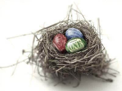 US Money Painted on Eggs in Nest