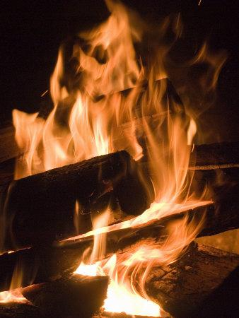 Fire and Wood