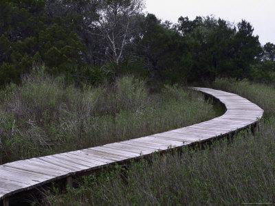 Drummond Point Park Nature Trail, Amelia Island