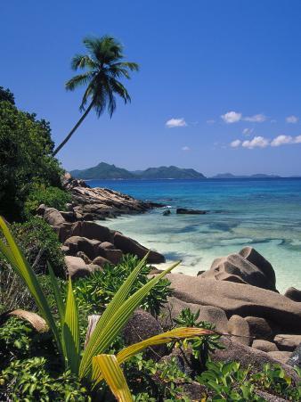 Tropical Beach, La Digue Island, Seychelles