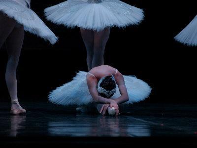 Ballet, Live Performance