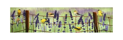 Gold Finch and Lavender