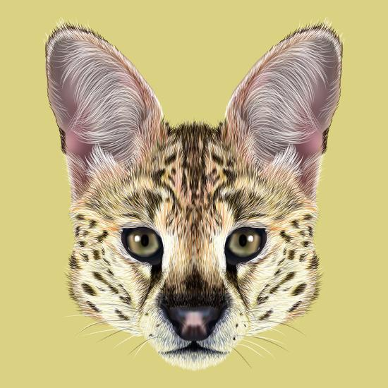 Illustrated Portrait of Serval