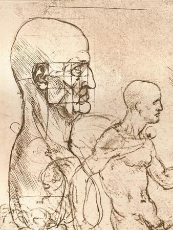 Drawing Illustrating the Theory of the Proportions of the Human Figure, C1472-C1519 (1883)
