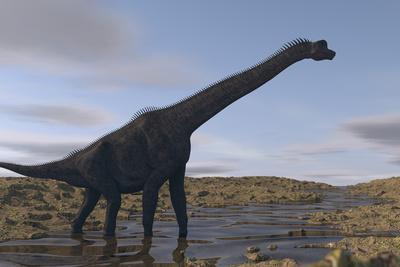Large Brachiosaurus Walking Along a Dry Riverbed
