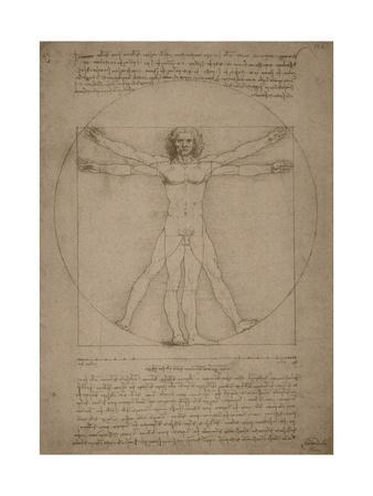 Leonardo Da Vinci's Vitruvian Man, Circa 1490