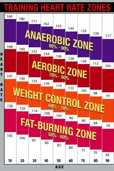 Training Heart Rate Zones Chart (Bright) Prints at ...