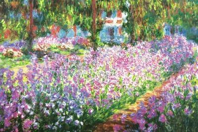 Claude Monet (Garden at Giverny)