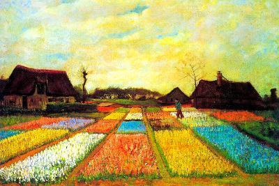 Vincent van Gogh Holland Flower Bed