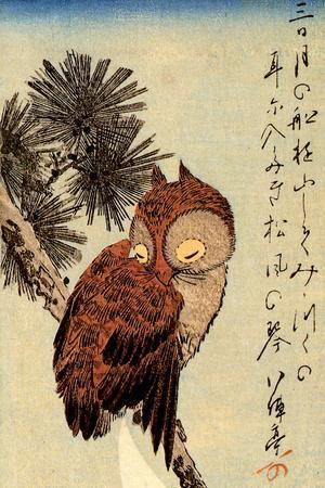 Utagawa Hiroshige Small Brown Owl on a Pine Branch