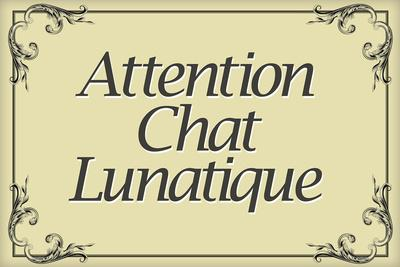 Attention Chat Lunatique French Crazy Cat