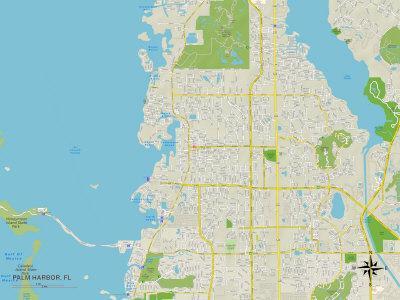Political Map of Palm Harbor, FL