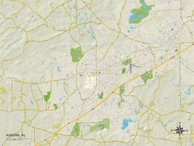 Political Map of Auburn, AL