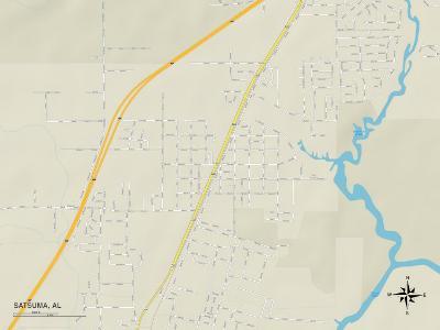 Political Map of Satsuma, AL