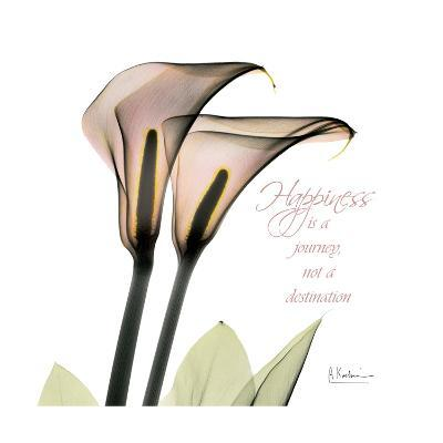 Calla Lily Happiness