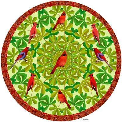 Bird Mandala II