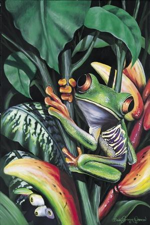 Rainforest Prince