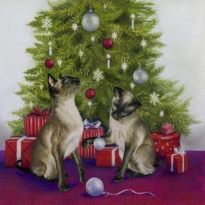 Christmas Siamese Cats