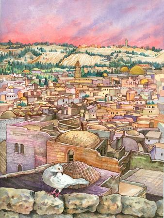 Jerusalem Dove