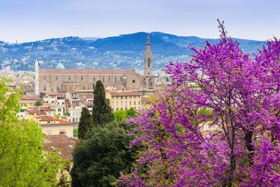 View of City Center of Florence, Firenze, UNESCO, Tuscany, Italy