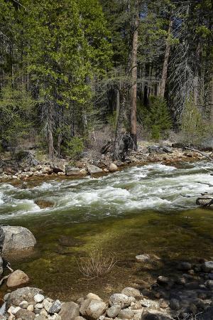 Merced River, Yosemite Valley, Yosemite National Park, California, USA