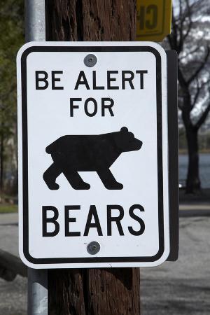 Bear Warning Sign, Silver Lake Resort, Eastern Sierra, California