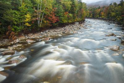 Autumn Along the Pemigewasset River, White Mountain NF, New Hampshire