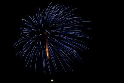 Minnesota, Mendota Heights, Fireworks, Aerial Displays