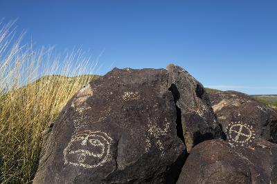 New Mexico, Three Rivers Petroglyph Site. Petroglyph on Rocks