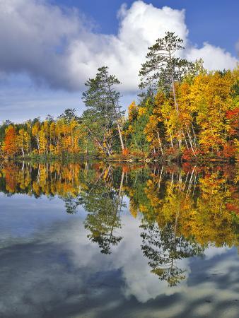 USA, Maine. Autumn Scenic of Upper Togue Pond