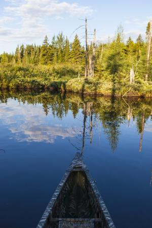 Canoeing on the Cold Stream in the Northern Forests of Maine, Usa