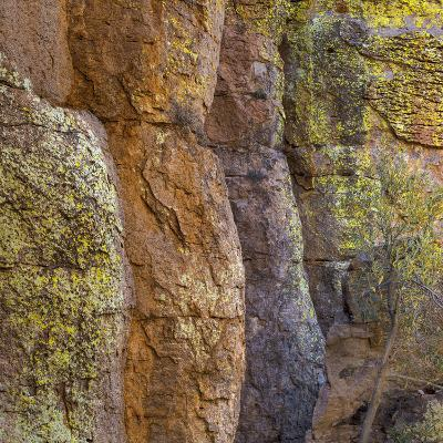 USA, Arizona, Chiricahua National Monument. Close-up of Cliff Face