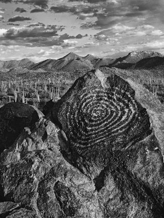 USA, Arizona, Saguaro National Park. Petroglyphs on Signal Hill