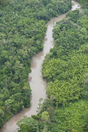 Tiputini River and Rainforest, Yasuni NP, Amazon Rainforest, Ecuador