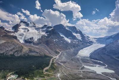 Mt. Andromeda and Columbia Icefield Seen from Wilcox Trail, Jasper NP
