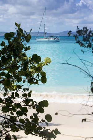 Buck Island, Saint Croix, Us Virgin Islands. Sailboat