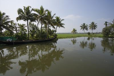 Water and Fields Meet in the Backwaters