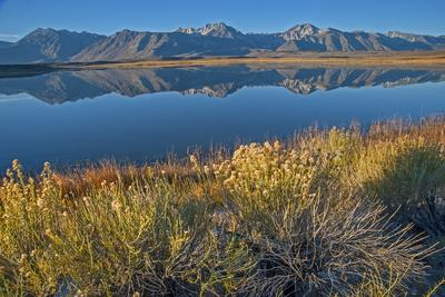 Mount Morrison and Laurel Mountain of the Eastern Sierra Nevada Crest