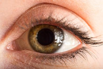 A Close Up of a Human Eye