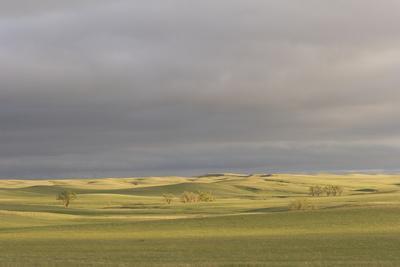 A Thunderstorm Above Oglala National Grassland in Nebraska