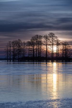 The Sunrise over Lake Mattamuskeet