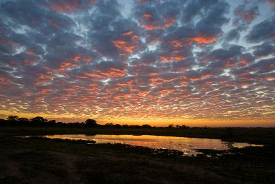 Sunrise over the Brazilian Pantanal