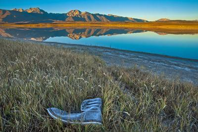 A Frosted, Abandoned Boot in Salt Grass by Big Alkali Lake